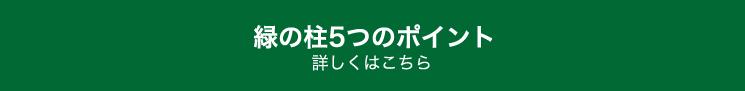 緑の柱5つのポイント