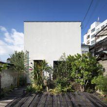 光 + 空 + 緑 の家0