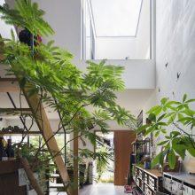 光 + 空 + 緑 の家4