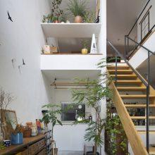 光 + 空 + 緑 の家3