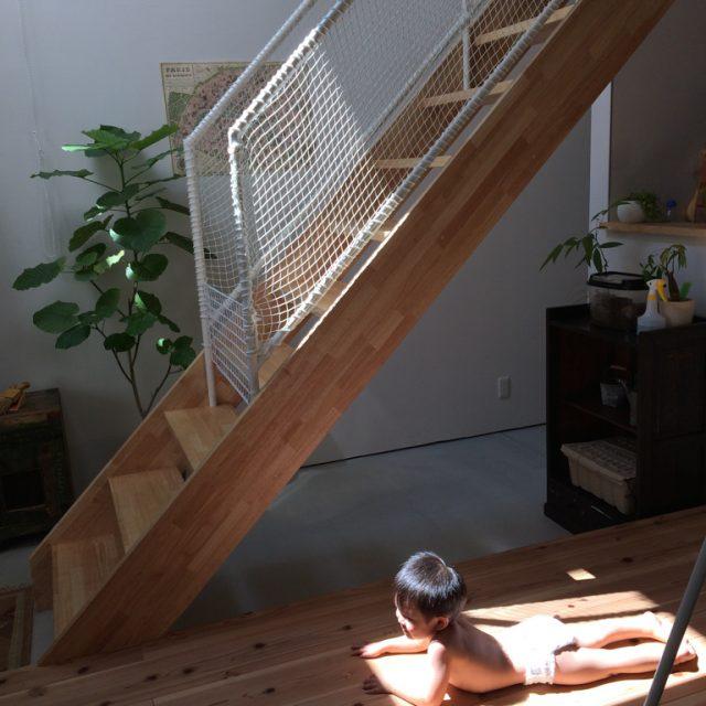 家の中に光が差し込んで気持ちいいです?ひなたぼっこは毎朝の子どもの習慣になっています?