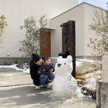 雪クマだるま、こんにちは
