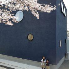 桜とD'S STYLE