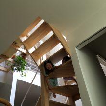 階段からニョキ