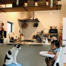 猫と赤ちゃんとキッチン