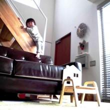 カラフルなおもちゃより、階段がすき!