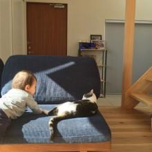 猫も人も集まる場所