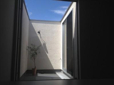 2F FIX窓