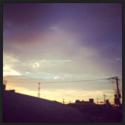 IMG_2110 (1)